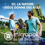 Micropolis - recrutement été 2021