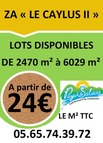 Terrains à vendre sur la ZA Caylus 2 à Agen d'Aveyron en Aveyron